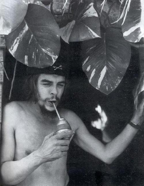 05 Che Guevara.
