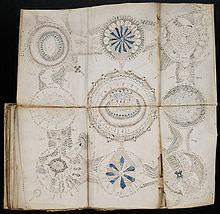 الگوهایی که صفحات مختلف دست نوشته های ووینیچ د ر کنار همدیگر می سازند