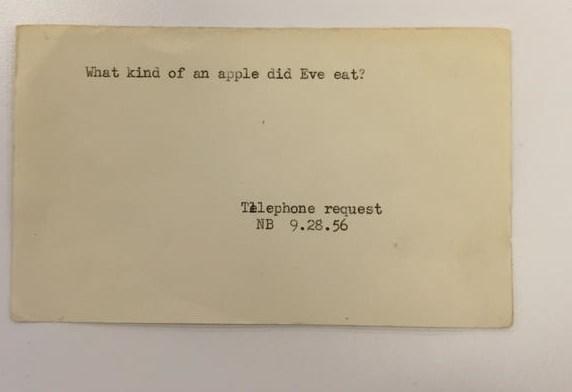 «حوا» چه مدل سیبی خورد ؟