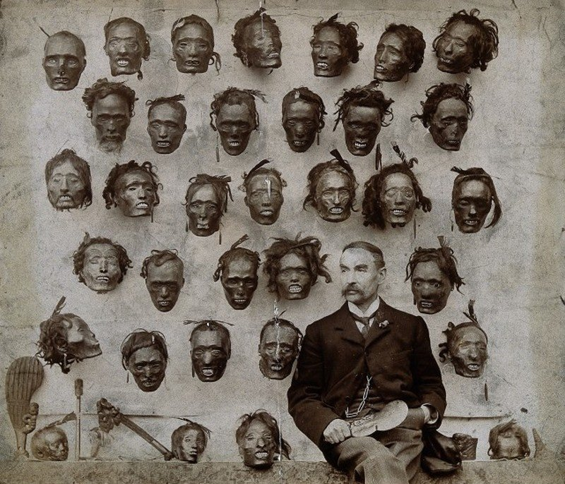 major General Horatio Gordon Robley with his collection of tattooed Maori heads 1895