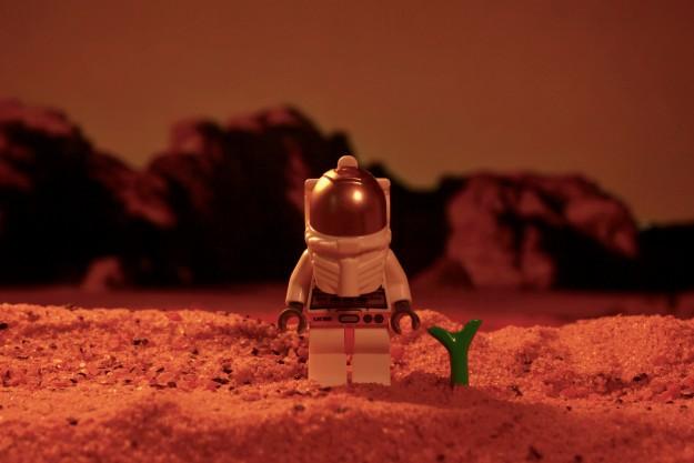 مریخی